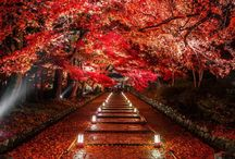 """PROUD IN RED / Alarmstufe Rot! An unserem Modetrend """"Proud in Red"""" führt kein Weg vorbei. Die Farbe Rot steht seit jeher für Wärme, Selbstbewusstsein und hat Signalwirkung. Was noch intensiver wirkt? Richtig geraten, die Kombination von Rot mit Rot. Derzeit sind überall Outfits für die Herbst/Winter-Saison 2017 zu sehen, die uns von Kopf bis Fuß in diese Signalfarbe hüllen.►http://bit.ly/KONEN-Proud-in-red"""