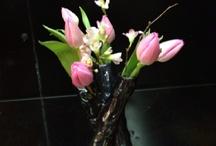 Flower arrangements / by Thomas Christianson