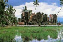 Indonesia-ku