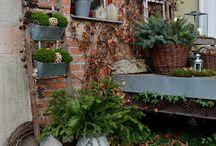 Traumhaus Umbau Garten