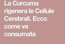 curcuma. come assumerla