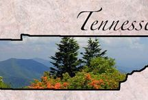 Tennessee  / by Beverly Robinson