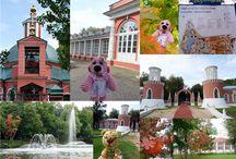 Усадьбы Москвы