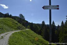 #ALBEinMALGA: Malga Fossernica, Vanoi, Trentino - 28-30 giugno 2013 / Un'anteprima di #ALBEinMALGA, in compagnia di blogger e giornalisti.