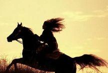 lovak ❤