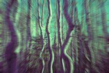optical Illusions / optical hallucinations