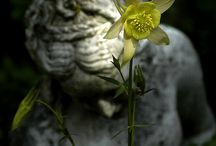 statue/effigy