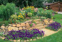 Garden Ideas / by Betty Ambrose