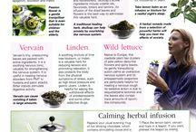 Wicca & herbs