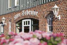Café Alte Scheune / In unserer zu einem romantischen Café umgebauten alten Scheune wird nach Herzenslust geschlemmt. Eine reiche Auswahl an selbstgebackenen Kuchen und Torten erwartet Sie dort, dazu Kaffeespezialitäten wie unser Eierkaffee und natürlich auch frisch gezapftes Bier und andere Getränke.