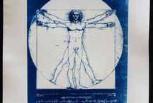 BleuCyan : cyanotypes / Catalogue de créations de cyanotypes : BleuCyan