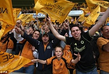 Wolves fans / by Wolverhampton Wanderers