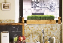 Kitchen Ideas / by Lindsay Voorhees