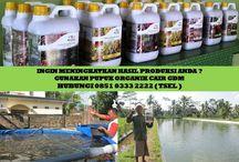 HUB 0851 0333 2222 ( TSEL ) Peluang Bisnis Rumahan / Peluang Bisnis Rumahan 2017,Peluang Bisnis Rumahan Modal kecil,Peluang Bisnis Rumahan Ibu Rumah Tangga,Peluang Bisnis Rumahan Menjanjikan,  Apakah GDM GDM merupakan Pupuk Bio Organik Cair yang di hasilkan dari bahan-bahan organik dan bakteri yang diperlukan oleh tanaman.  BERMINAT DENGAN PELUANG DARI KAMI HUBUNGI :  0851 0333 2222 ( TSEL ) http://peluangusahaagro.com/