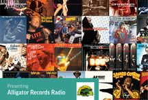 Alligator Records Radio on TuneIn / TuneIn -- the world's largest audio network -- officially launched Alligator Records Radio today, December 9, 2014. The Alligator Records Radio station on TuneIn will stream songs 24/7 from Alligator's extensive catalog of music covering 43 years of blues and roots rock releases. Exclusively available on TuneIn, Alligator Records Radio is one of only a handful of label stations to be developed and curated by TuneIn itself.  / by Alligator Records