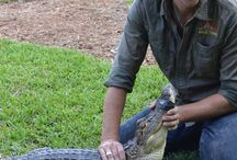 Swim with a Gator / Swim with a Gator at Dade City's Wild Things