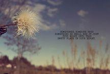 Preach / by Michaela Burns