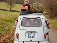 Christmas & Cars