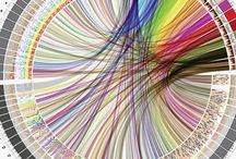 human genome / visualisation circos heatmap
