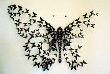 Pillango pillangokbol