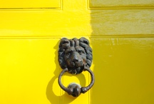 Yellow / by Alexe St-Jacques