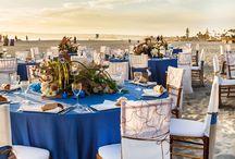 Coastal Inspired Party