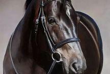 Paintings horses