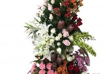 BloomsOnly Flower Arrangements / BloomsOnly is leading florist in Pune that will help you to send flowers, vase arrangements, basket arrangements, online bouquet delivery in Pune.