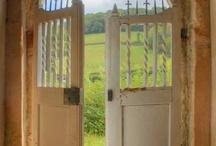 Doors, Gates, and Windows / by Debra