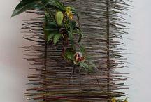 Blomsterkunst / Bambusvæg