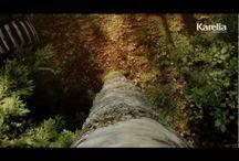 Wood Videos