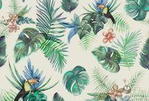 Tropical paper