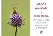 Mapes mentals i conceptuals