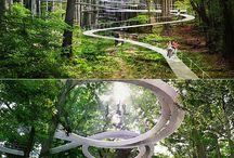 bosque huentitan