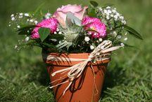 Henley Flowers / Beautiful flowers