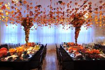Peach / Orange Weddings / A variety of wedding, shower, and party ideas in orange, tangerine, coral, apricot, terracotta, and peach shades, tints, and color palettes. #peach #orange #apricot #wedding #weddings #showers #parties / by Something Floral™