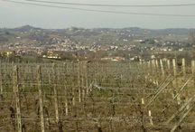 Monferrato world heritage