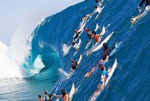 surfen babyy