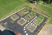 Дизайн овощного огорода
