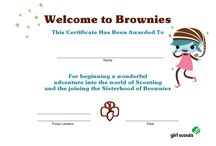 Girl Scouts Brownies / Ideas for Brownie Girl Scout Leaders - Tips for earning badges, craft ideas, field trip ideas and more!