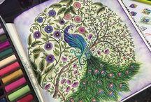 Secret Garden / Kreatív