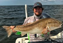 Beautiful Fish Catches