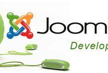 Joomla Developers