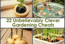Gardening/ Tuinieren tips