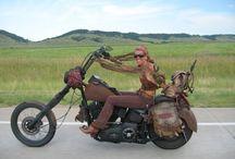 Bikes / Cool custom bikes.  https://www.facebook.com/SpeedShopNorth