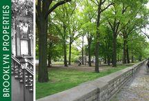 Brooklyn Parks & Recreation