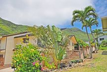 Hawaii Real Estate / Many Hawaii Homes from Hawaii Luxury Real Estate to Hawaii Beach Cottages / by HOME SHOPPE HAWAII - Oahu Real Estate Services