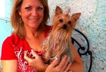 Destination NOLA / Pet travel in New Orleans and Louisiana