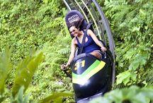 PTV - Jamaica