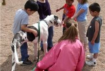 Animal Assisted Therapy / by Krisann Stegall